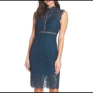 💚Bardot Lace Sheath Dress sz 8